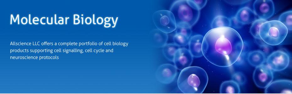 molecular_biology